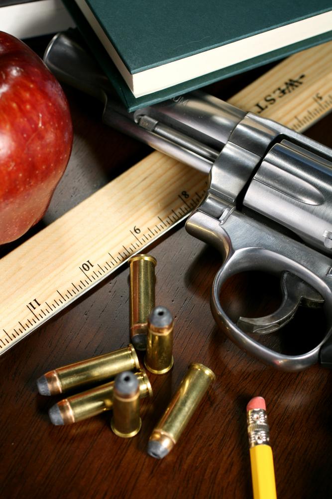 gun research paper