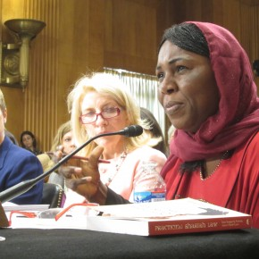 Strong Support For IVAWA and CEDAW in Senate Hearing