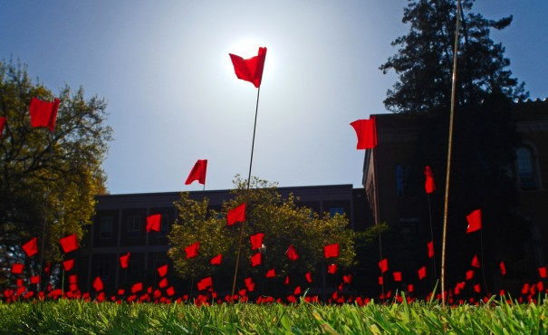 Each flag in this display represents a survivor of sexual assault on one college campus. via wolfram burner