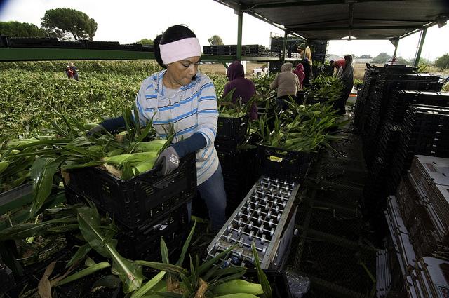 Five Female Migrant Workers Awarded $17 Million In Rape